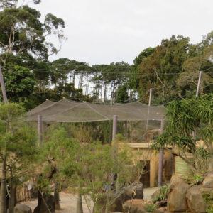 Africa Escarpment