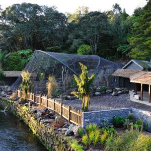 Auckland Zoo KEA Aviary