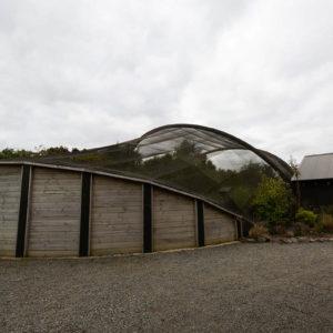Pukaha Mt Bruce Aviary